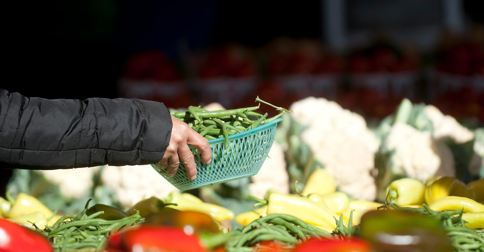 Hmong farmer placing vegetables on a table at a Saint Paul farmers market