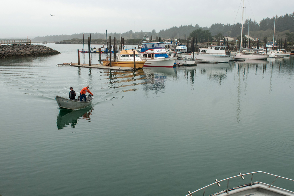 Small boats in a harbor in Umpqua, Oregon